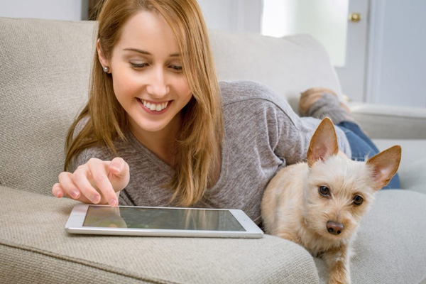 Pet Friendly Pest Control Solutions